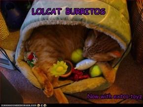 Lolcat burritos