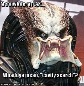 "Meanwhile, at LAX...  Whaddya mean, ""cavity search""?"
