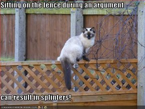 Sitting on the fence during an argument  can result in splinters!