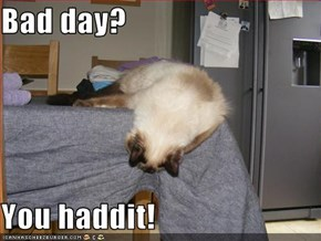 Bad day?  You haddit!