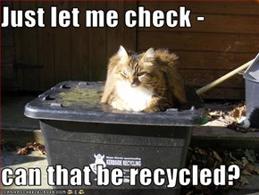 Just let me check -  can that be recycled?