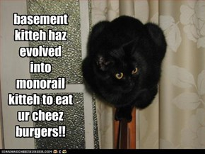 basement kitteh haz evolved into monorail kitteh to eat ur cheez burgers!!