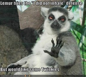 "Lemur tries the ""I did not inhale"" defense  But would like some Twinkies"