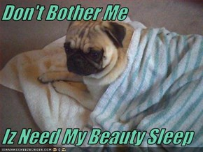 Don't Bother Me  Iz Need My Beauty Sleep