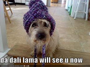 da dali lama will see u now