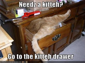 Needz a kitteh?  Go to the kitteh drawer