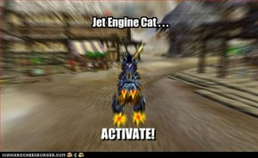 Jet Engine Cat . . .