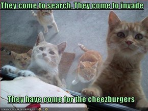 They come to search, They come to invade  They have come for the cheezburgers