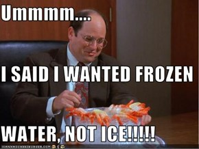 Ummmm.... I SAID I WANTED FROZEN  WATER, NOT ICE!!!!!