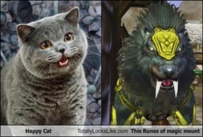 Happy Cat Totally Looks Like This Runes of magic mount