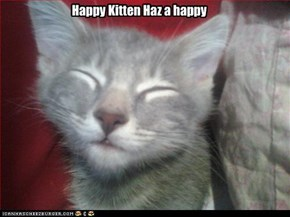 Happy Kitten Haz a happy