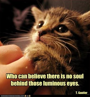 Who can believe there is no soul behind those luminous eyes.