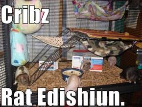 Cribz  Rat Edishiun.