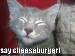 say cheeseburger!