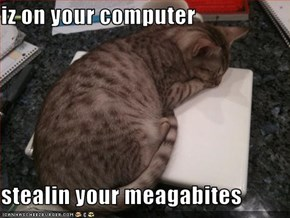 iz on your computer  stealin your meagabites