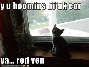 y u hoomins hijak car  ya... red ven