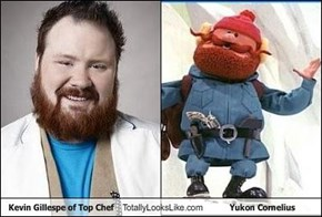 Kevin Gillespe of Top Chef Totally Looks Like Yukon Cornelius