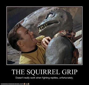 THE SQUIRREL GRIP