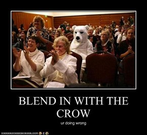 BLEND IN WITH THE CROW