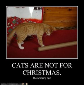 CATS ARE NOT FOR CHRISTMAS.
