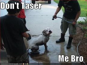 Don't Taser  Me Bro