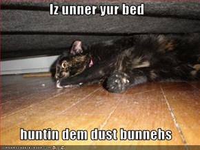 Iz unner yur bed  huntin dem dust bunnehs
