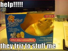 help!!!!!  they triz to stuff me