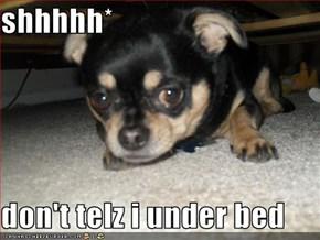 shhhhh*  don't telz i under bed