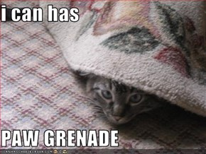 i can has  PAW GRENADE