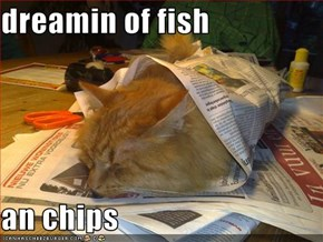 dreamin of fish  an chips