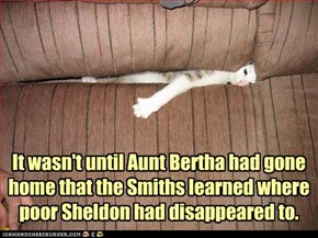 It wasn't until Aunt Bertha had gone home that the Smiths learned where poor Sheldon had disappeared to.
