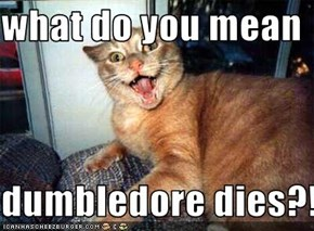 what do you mean  dumbledore dies?!