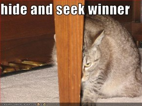 hide and seek winner