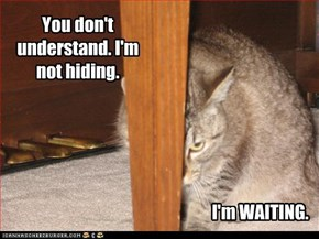 You don't understand. I'm not hiding.