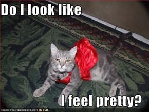 Do I look like  I feel pretty?
