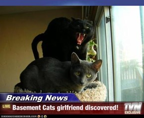Breaking News - Basement Cats girlfriend discovered!