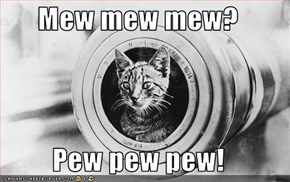 Mew mew mew?  Pew pew pew!