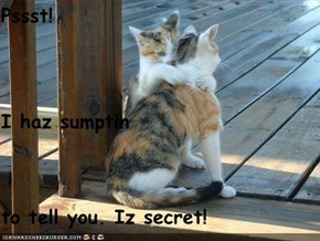 Pssst! I haz sumptin to tell you. Iz secret!