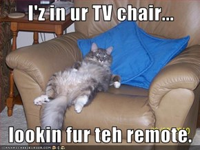 I'z in ur TV chair...     lookin fur teh remote.