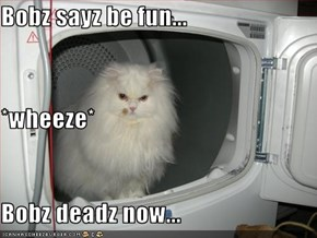 Bobz sayz be fun... *wheeze* Bobz deadz now...