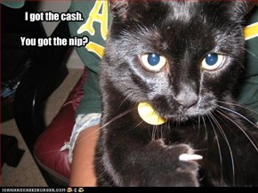 I got the cash.   You got the nip?
