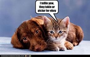 I tellin yew, they takin ur pictur fer ebay