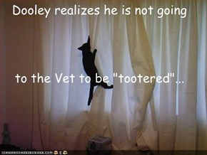 "Dooley realizes he is not going to the Vet to be ""tootered""..."
