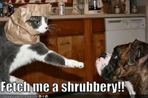 Fetch me a shrubbery!!