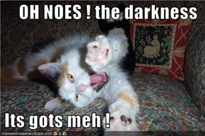 OH NOES ! the darkness    Its gots meh !