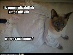 i iz queen elizabitteh kitteh the 2nd