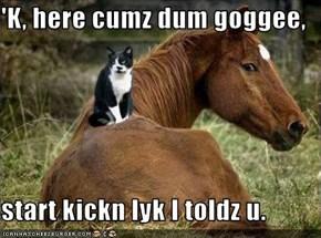 'K, here cumz dum goggee,  start kickn lyk I toldz u.