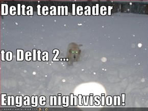Delta team leader to Delta 2... Engage nightvision!