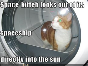 Space-kitteh looks out of its  spaceship directly into the sun