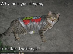 Why are you singing  5 dollar footlong??